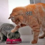 wholesome-memes cute text: ME you *LOVE. AND APPRECIATION*  cute