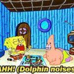 spongebob-memes spongebob text: AHH! (DolÖhin noises)  spongebob
