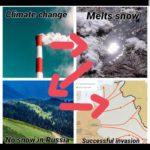 other-memes dank text: Climate ehange NosnowiwRussia• Méltsswo@ Successfulinvasion  dank
