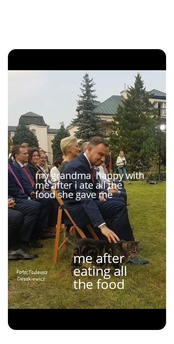 cute wholesome-memes cute text: ndma n rp er i ate ål foo he gave@ Tadeusz ' ewiC2 me after eating all the food