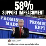 political-memes political text: SUPPORT IMPEACHMENT Rasmussen Poll MADE?? KEPT Wannapik.com Donald J. Trump @reel Done dTru mp Must be my great and unmatched wisdom  political