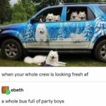 wholesome-memes cute text: when your whole crew is looking fresh af ebeth a whole bus full of party boys  cute