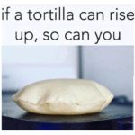wholesome-memes cute text: if a tortilla can rise up, so can you  cute