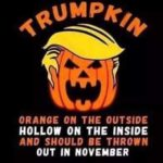 political-memes political text: ORANGE ON THE OUTSIDE HOLLOW ON THE INSIDE AND SHOULD BE THROWN OUT IN NOVEMBER  political
