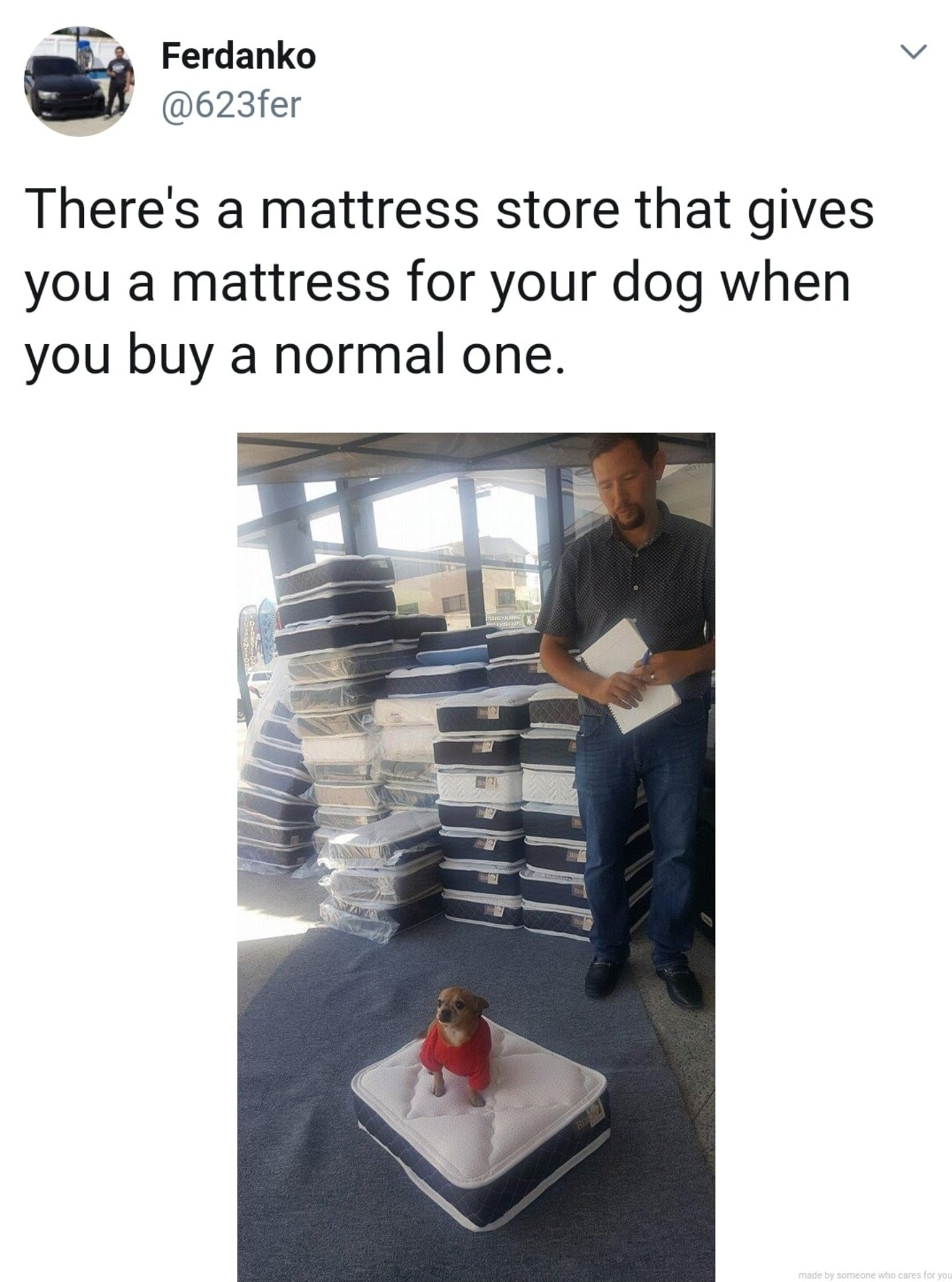 cute wholesome-memes cute text: Ferdanko @623fer There's a mattress store that gives you a mattress for your dog when you buy a normal one. made by someone cares for you