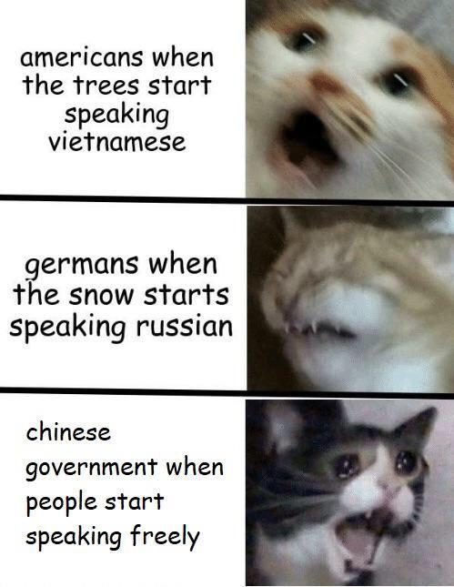 dank other-memes dank text: americans when the trees start speaking vietnamese germans when the snow starts speaking russian chinese government when people start speaking freely 'I