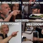 other-memes cute text: STOP MIXING MEMES WHATiDOYOU MEAN? IS HAPPENIN 000  cute