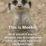 """wholesome-memes cute text: This is Meekie. He is proud of you for whatever you accomplished today, no matter howssmall yoü think it waS></noscript><img class=""""lazyload"""" src="""