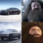 dank-memes cute text:  Dank Meme, Tesla Truck, Hagrid, Harry Potter