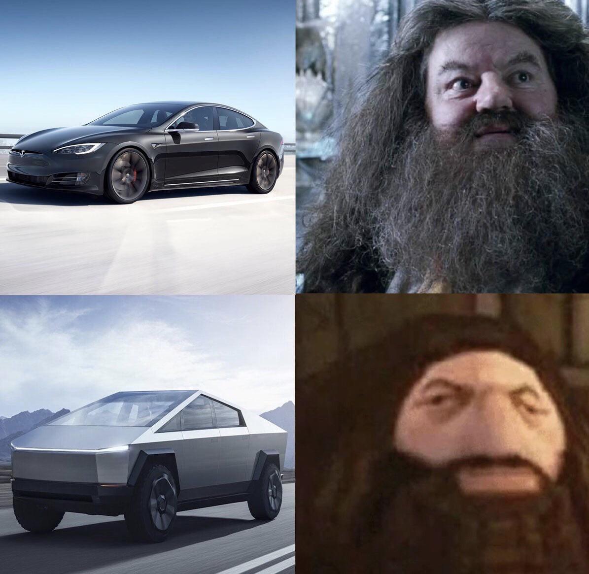 Dank Meme, Tesla Truck, Hagrid, Harry Potter dank-memes cute text: