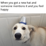 wholesome-memes cute text: When you got a new hat and someone mentions it and you feel happy  cute