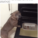 wholesome-memes cute text: when u try to cook and hope its good cause you love her very much and just want her to be proud of you  cute