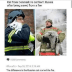 other-memes dank text: Cat from Denmark vs cat from Russia after being saved from a fire 1030 Comments GforceDz • sep 26.2018, 6:19 AM The difference is the Russian cat started the fire.  dank
