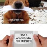 "wholesome-memes cute text: A letter f"" you. Have a wonderful day kind stranger :)  cute"