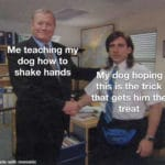 wholesome-memes cute text: Me teaching my dog hoqto shake hands My dog hoping this IS the trick that gets him the treat nade with mematic  cute