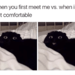 wholesome-memes cute text: when you first meet me vs. when i get comfortable  cute