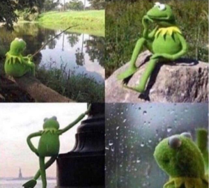 Kermit waiting Frog meme template