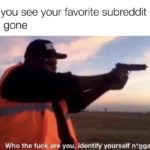 dank-memes cute text: When you see your favorite subreddit but its icon is gone Who the fuck are you, identify yourself nigga  Dank Meme