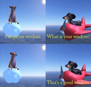 I dispense wisdom (blank) Opinion meme template