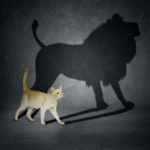 Cat with Lion Shadow Animal meme template blank  Animal, Cat, Vs, Subterfuge, Shadow, Lion