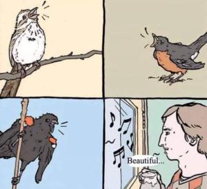 Birds singing comic Opinion meme template