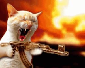 Cat with AK-47 Gun meme template