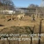 Im gonna shoot you right between the fucking eyes, bitch Tiger King meme template blank  Tiger King, Joe Exotic, Angry, Tiger, Animal, Cat, Guns, Shooting, Threatening, Eyes