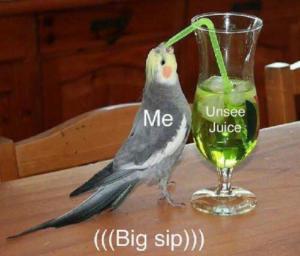 Bird drinking unsee juice Food meme template