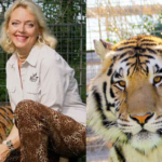 Carol Baskin vs Joe Exotic Tiger King meme template blank  Tiger King, Carol Baskin, Joe Exotic, Tiger, Animal