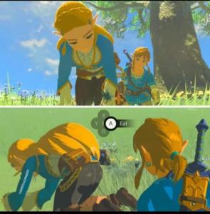 Press A to eat Zelda NSFW meme template