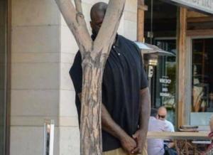 Shaq hiding behind tree Black Twitter meme template