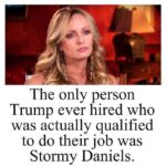 Political Memes Political, Trump, Biden, Mattis text: The only person Trump ever hired who was actually qualified to do their job was Stormy Daniels.  Political, Trump, Biden, Mattis