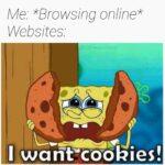 Spongebob Memes Spongebob, No, JavaScript, Caboose text: Me *Browsing online* Websites I wanecoökies!  Spongebob, No, JavaScript, Caboose