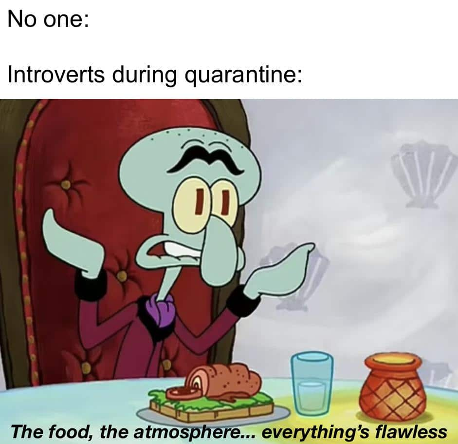 Spongebob Meme, Introvert, Squilliam Fancison, COVID, COVID-19, Coronavirus, Quarantine, Lockdown Spongebob Memes Spongebob, No, Netflix, Okay, NOT EVEN WALUIGI, Cake Day text: No one: Introverts during quarantine: The food, the atmo p re... everything's flawless
