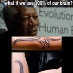 other memes Dank,  text: what if we useg00% of our brain? Evolutior Human  Dank,