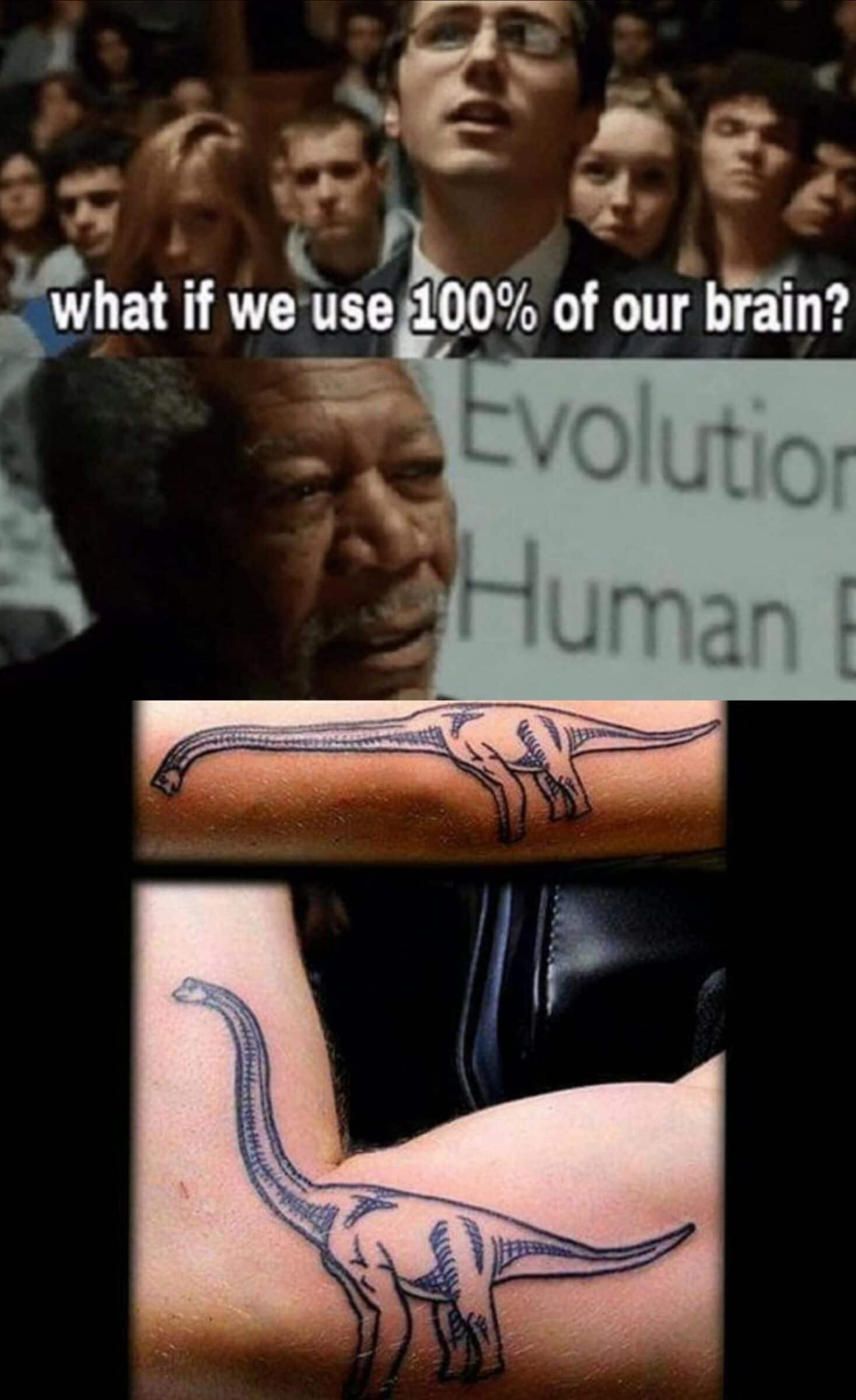 Dank,  other memes Dank,  text: what if we useg00% of our brain? Evolutior Human