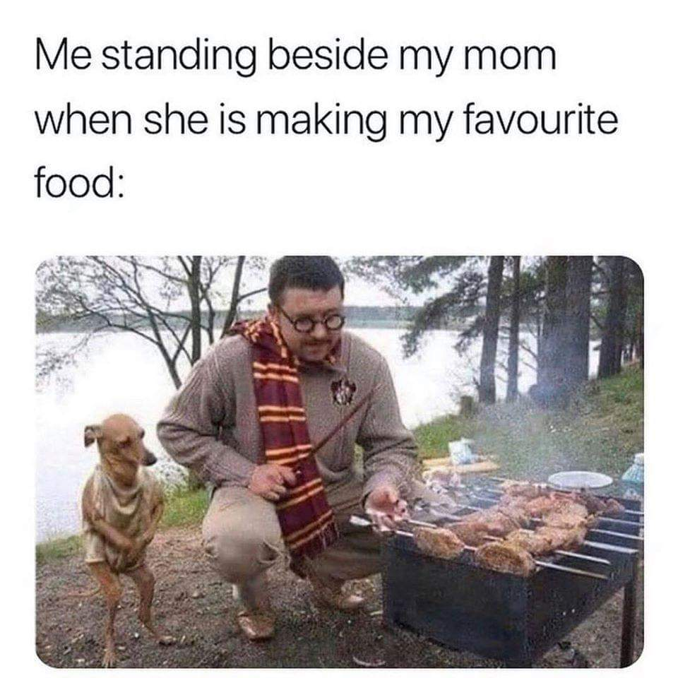 Wholesome memes, Dobby, Harry Potter, Master, NSFW, Harry Wholesome Memes Wholesome memes, Dobby, Harry Potter, Master, NSFW, Harry text: Me standing beside my mom when she is making my favourite food: