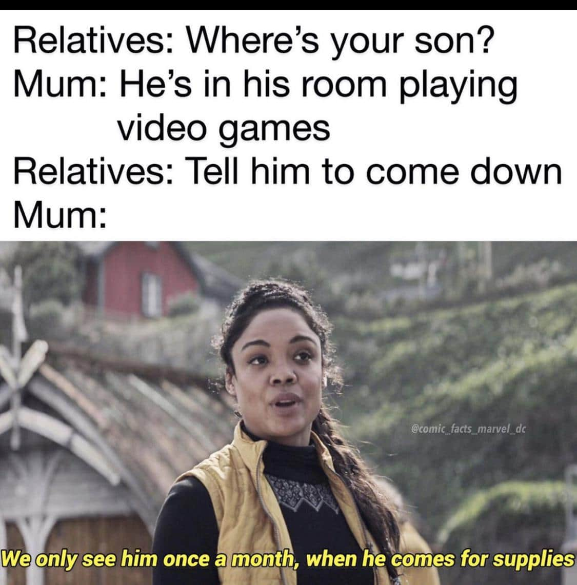 Dank, Visit, Negative, Feedback, False Negative, False other memes Dank, Visit, Negative, Feedback, False Negative, False text: Relatives: Where's your son? Mum: He's in his room playing video games Relatives: Tell him to come down Mum: @comic facts marvel dc We only see him once a mönth, when he qomes for supplies