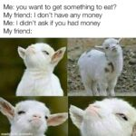 Wholesome Memes Wholesome memes, Friends text: Me: you want to get something to eat? My friend: I don