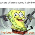 Spongebob Memes Spongebob, Theyre text: Gun-owners when someone finally breaks in: bee r you  Spongebob, Theyre