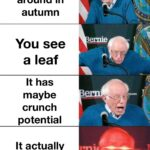 other memes Dank, Visit, OC, Negative, JPEG, Feedback text: You Walk around in autumn You a leaf It has maybe crunch potential It actually crunches made with mematic  Dank, Visit, OC, Negative, JPEG, Feedback