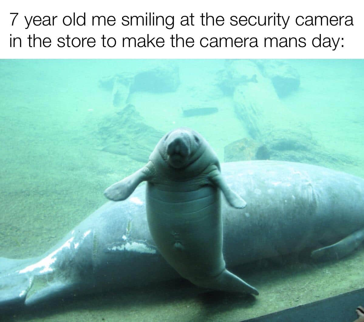 Wholesome memes,  Wholesome Memes Wholesome memes,  text: 7 year old me smiling at the security camera in the store to make the camera mans day: