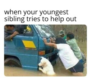 Wholesome Memes Wholesome memes, Jerry text: when your youngest sibling tries to help out