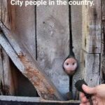 cringe memes nsfw text: City people in the cou try.  nsfw