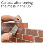 Dank Memes Dank, Canada, Canadian, Canadians, Americans, American text: Canada after seeing the mess in the US:  Dank, Canada, Canadian, Canadians, Americans, American