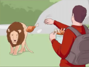 Throwing food at lion Food meme template