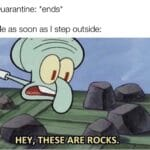 Spongebob Memes Spongebob,  text: Quarantine: *ends* Me as soon as I step outside: HEY, THESEfAßE50CKS.  Spongebob,