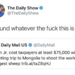 Political Memes Political, Trump, Dick Cheney, Cheney, Argali, Texas text: The Daily Show @TheDailyShow Defund whatever the fuck this is e Daily Mail US e @DailyMail Don Jr. cost taxpayers at least $75,000 with hunting trip to Mongolia to shoot the world