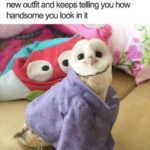 Wholesome Memes Wholesome memes,  text: When your Mom picked you out a new outfit and keeps telling you how handsome you look in it  Wholesome memes,