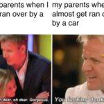 Dank Memes Dank,  text: my parents when I get ran over by a car Oh dear, oh ±ar. Gorgeous. my parents when I almost get ran over by a car You fucklng donkey  Dank,
